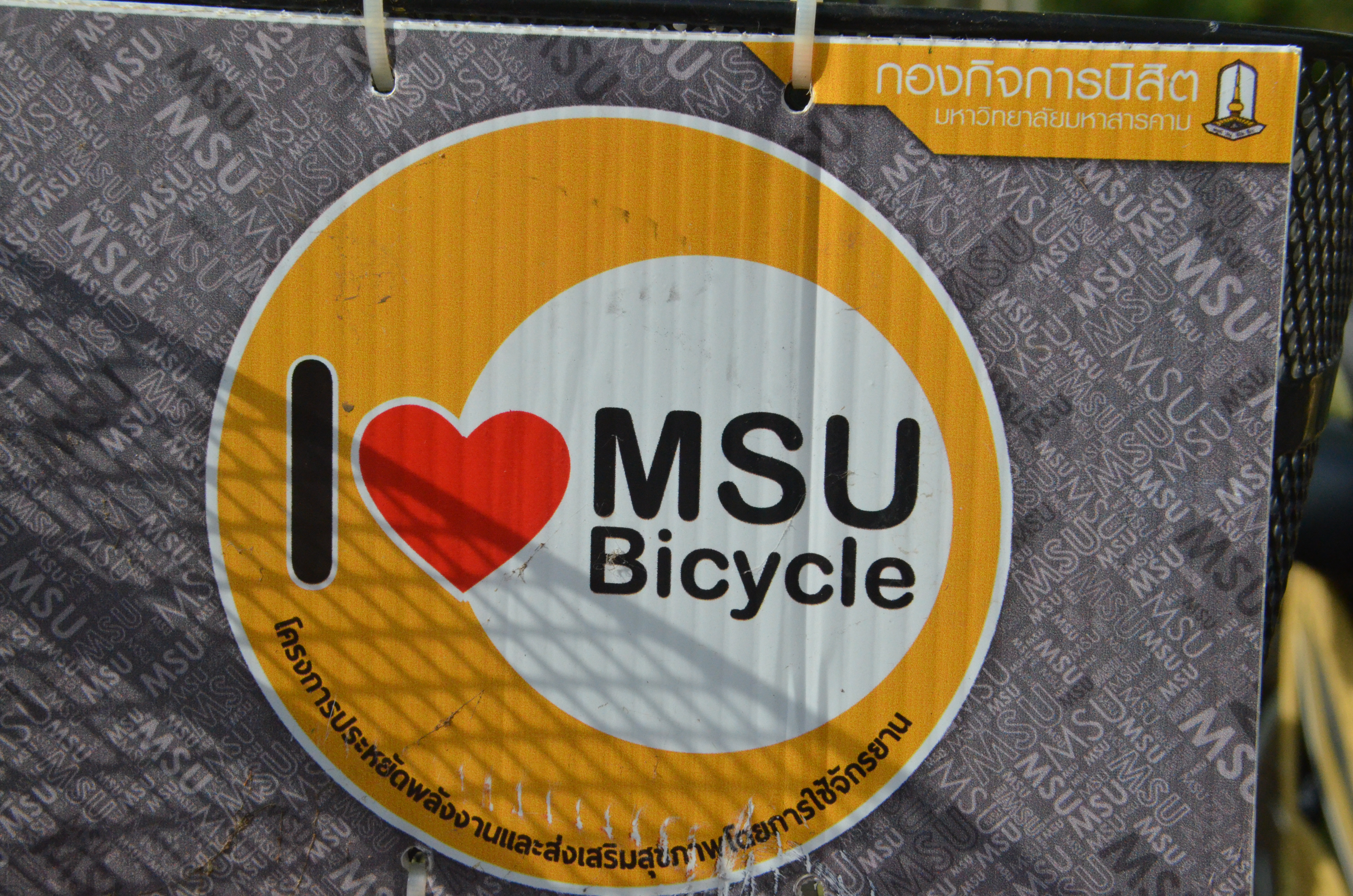The MSU Healthy Open Cycling Zone Campaign