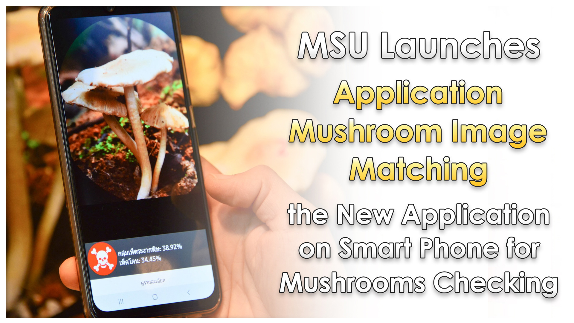 "MSU Launches ""Application Mushroom Image Matching"" the New Application on Smart Phone for Mushrooms Checking"